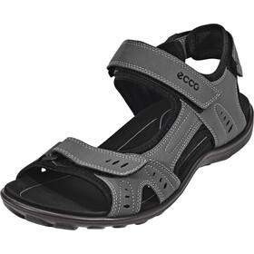 ECCO All Terrain Miehet sandaalit , harmaa